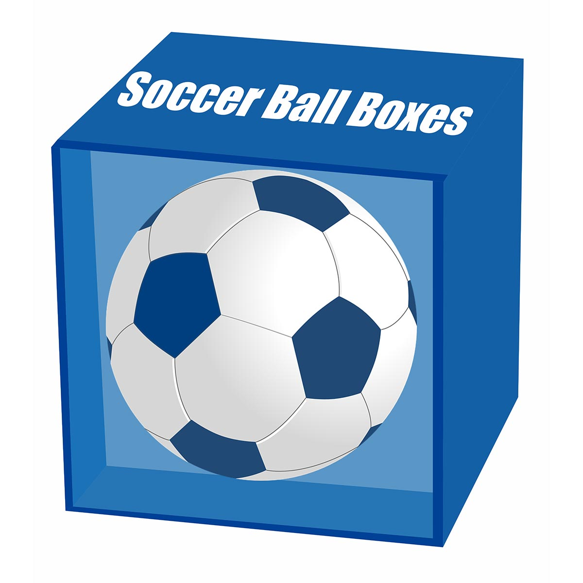 mini soccer ball display case