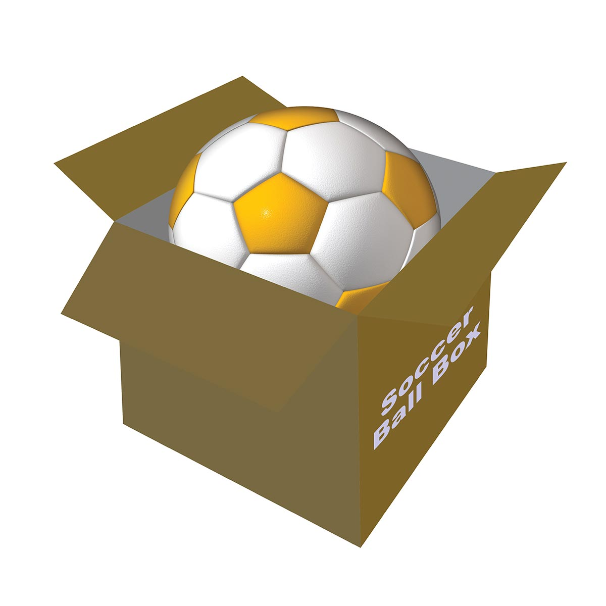 soccer ball holder