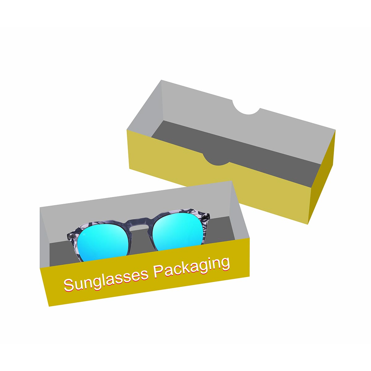 sunglass storage case